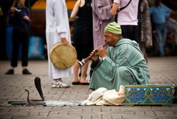 A-Snake-Charmer-in-Marrakech-Dies-from-Snakebite.jpg